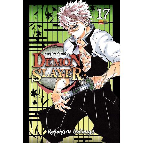 Demon-Slayer---Kimetsu-no-Yaiba---17